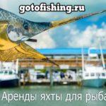 Customs 135 в аренду - Капри - моторная лодка / моторная яхта чартер для рыбалки