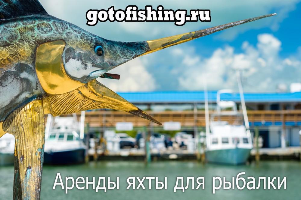 Customs в аренду — Неаполь — моторная лодка / моторная яхта чартер для рыбалки